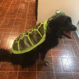 Other - Dog Turtle Costume